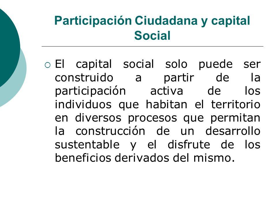 Participación Ciudadana y capital Social
