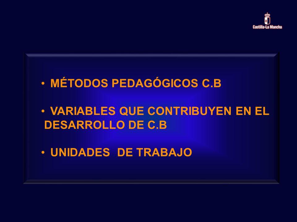 MÉTODOS PEDAGÓGICOS C.B