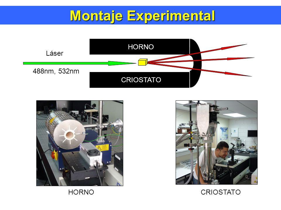 Montaje Experimental Láser 488nm, 532nm HORNO CRIOSTATO HORNO