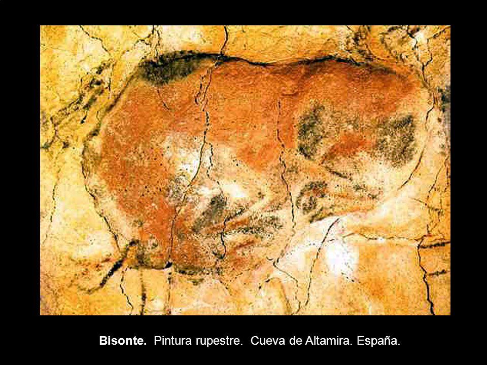 Bisonte. Pintura rupestre. Cueva de Altamira. España.