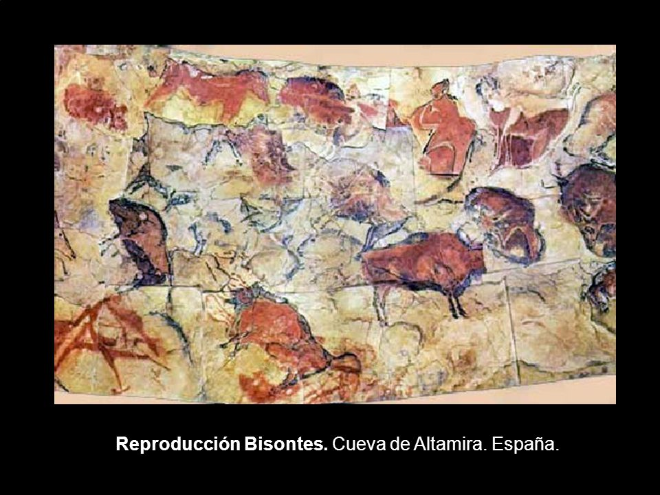 Reproducción Bisontes. Cueva de Altamira. España.