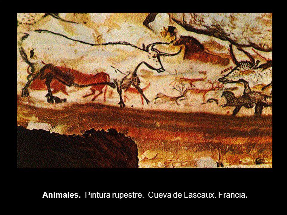 Animales. Pintura rupestre. Cueva de Lascaux. Francia.