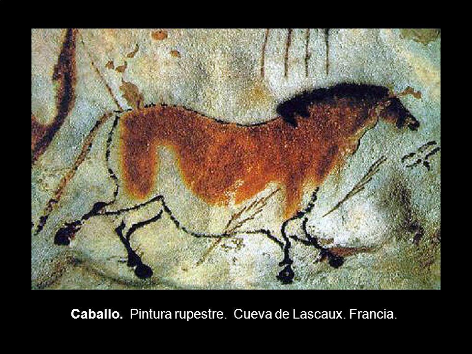 Caballo. Pintura rupestre. Cueva de Lascaux. Francia.
