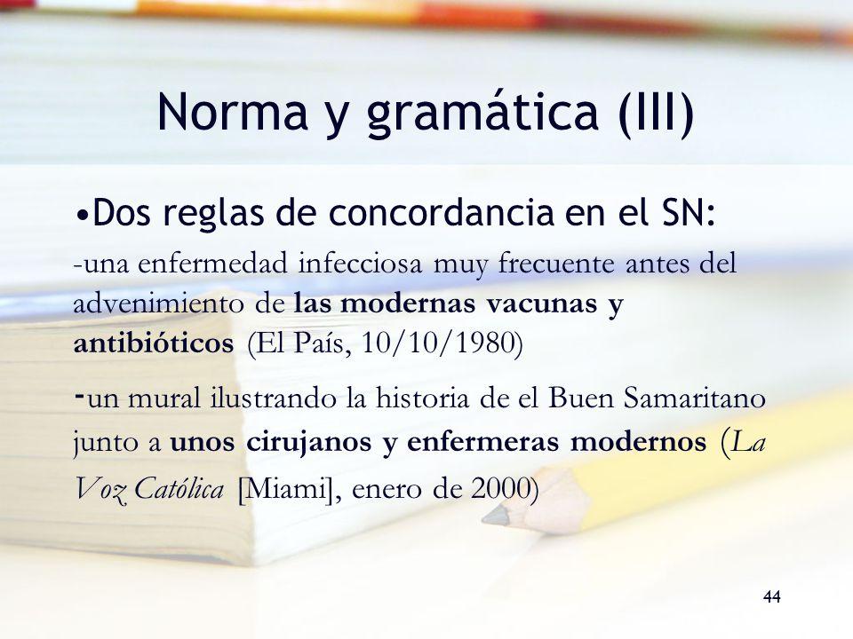 Norma y gramática (III)