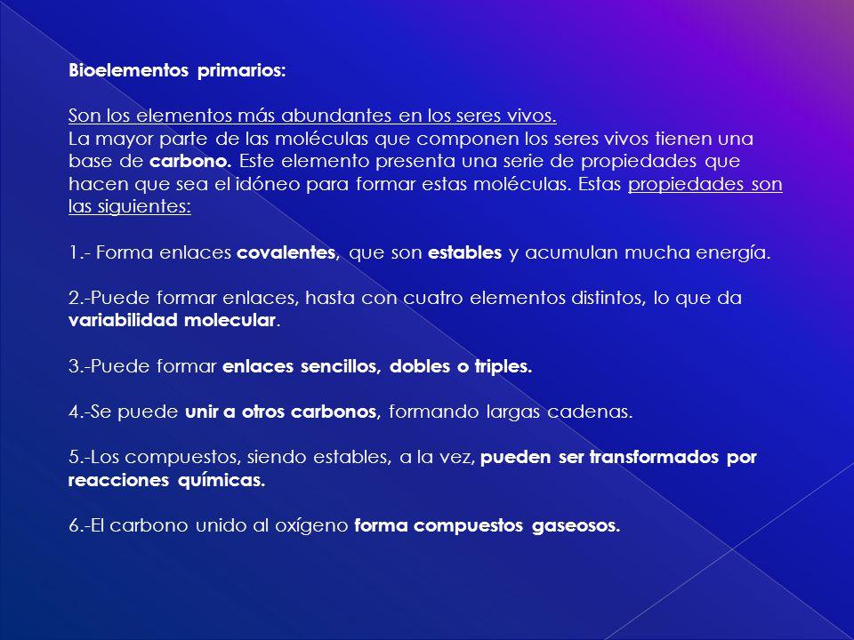 Bioelementos primarios: