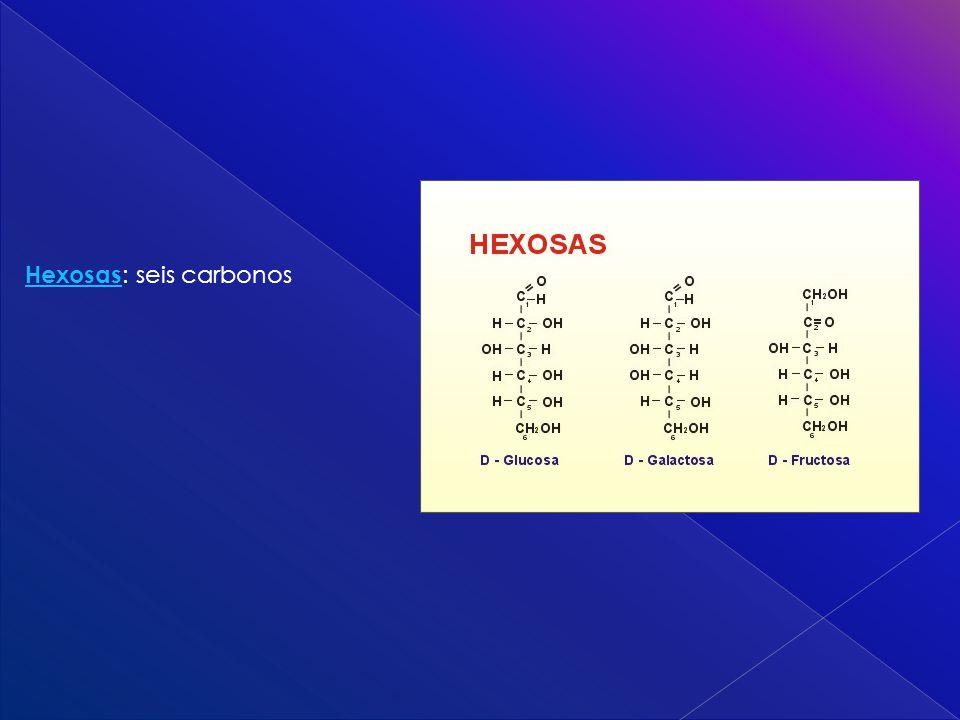 Hexosas: seis carbonos