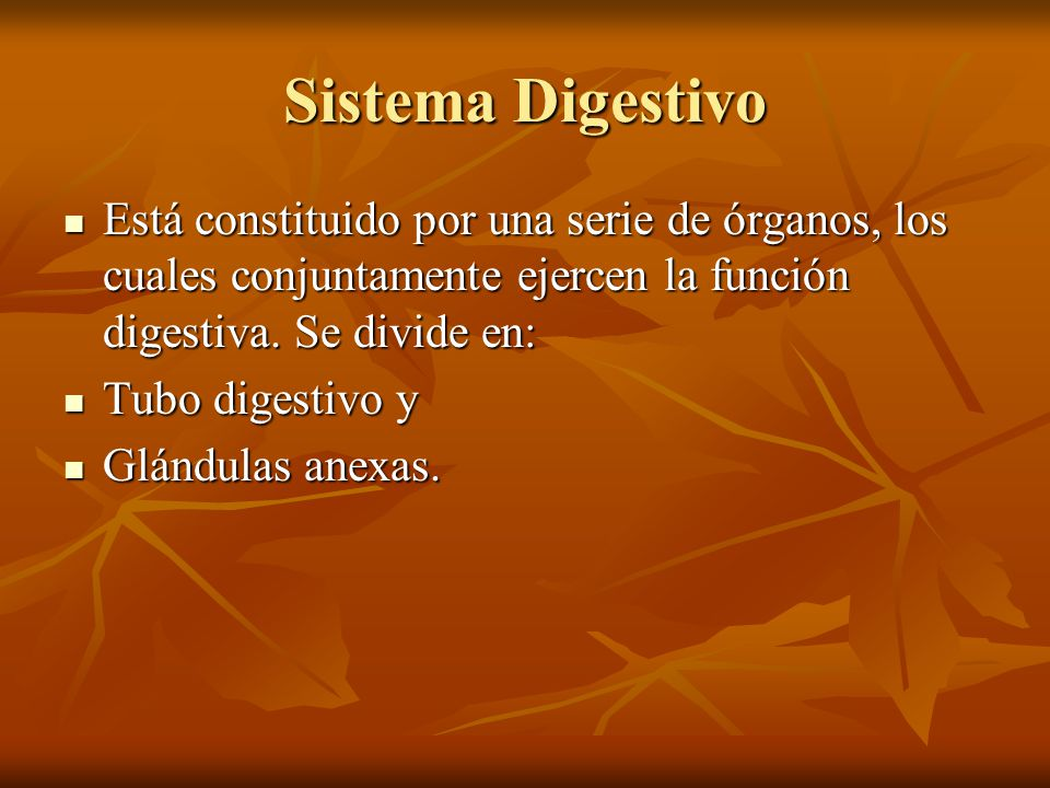 Sistema Digestivo Está constituido por una serie de órganos, los cuales conjuntamente ejercen la función digestiva. Se divide en: