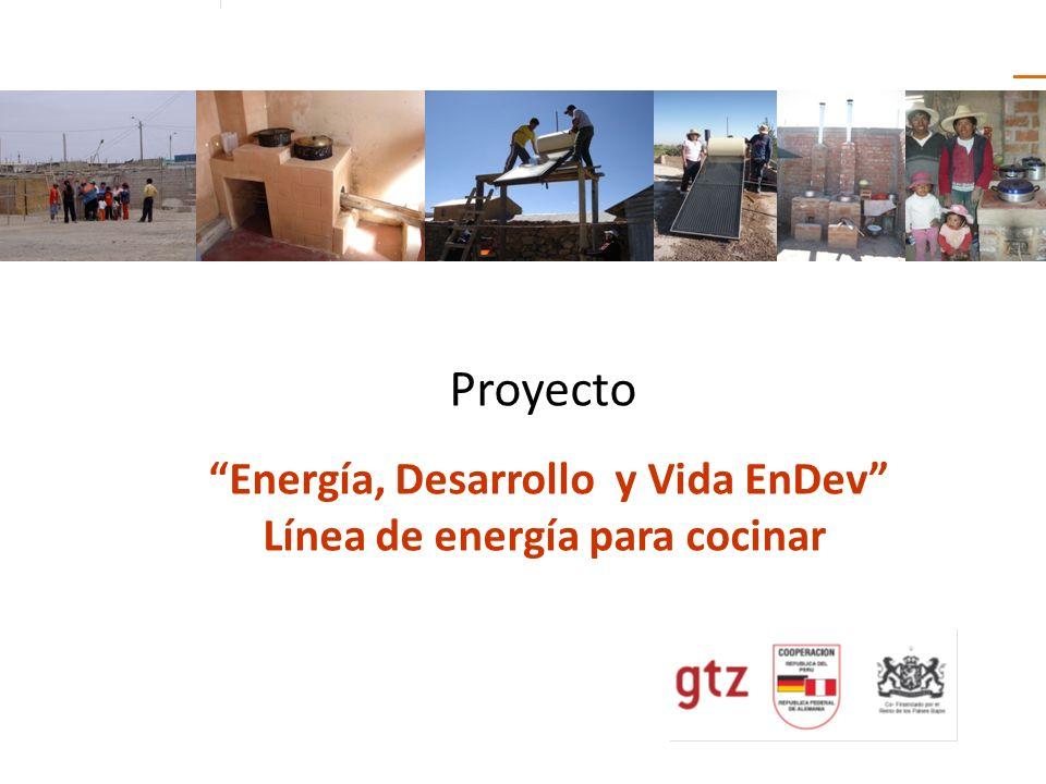 Energía, Desarrollo y Vida EnDev Línea de energía para cocinar
