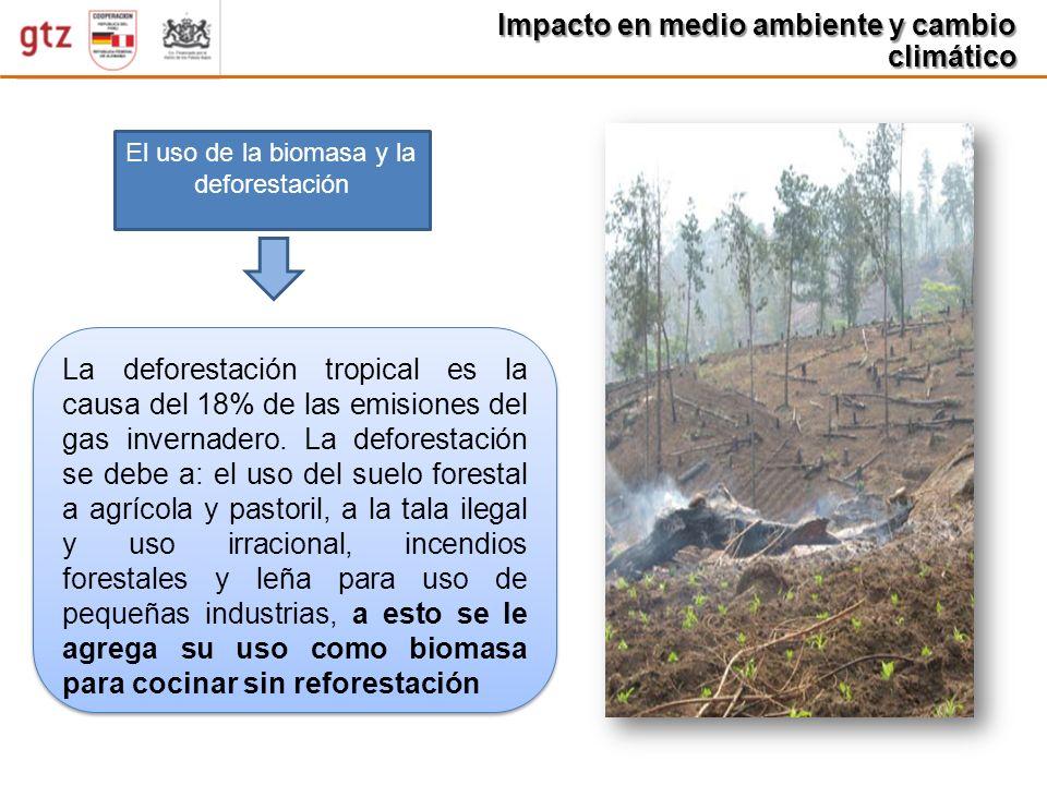 Impacto en medio ambiente y cambio climático