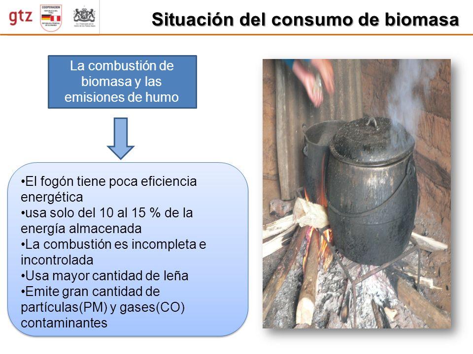 La combustión de biomasa y las emisiones de humo