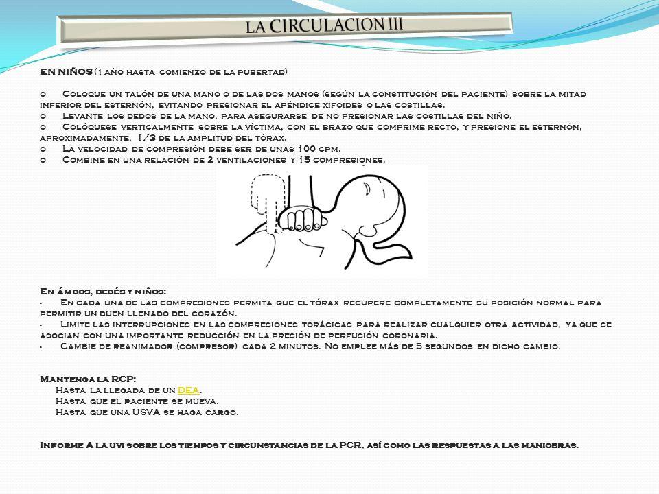 LA CIRCULACION III