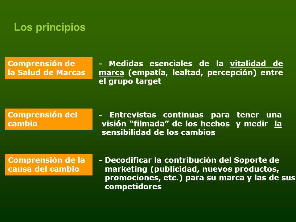 Los principios Comprensión de la Salud de Marcas
