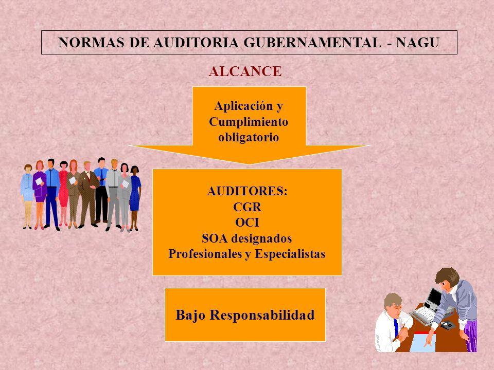 NORMAS DE AUDITORIA GUBERNAMENTAL - NAGU Profesionales y Especialistas