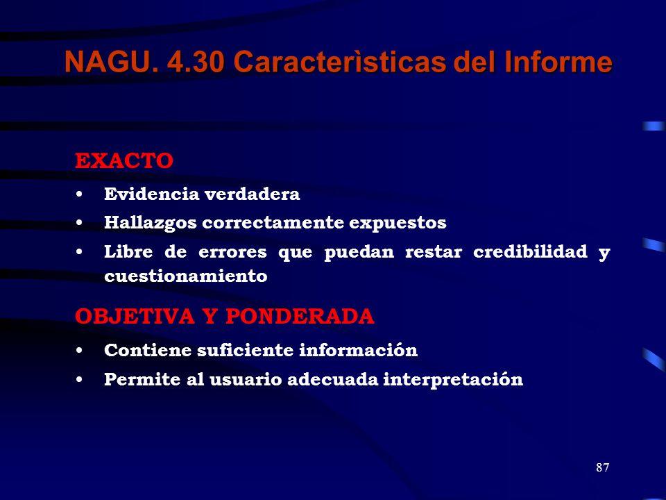 NAGU. 4.30 Caracterìsticas del Informe