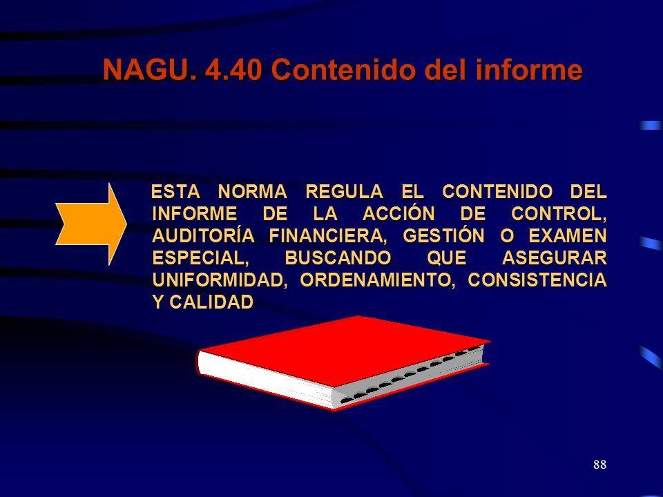 NAGU. 4.40 Contenido del informe