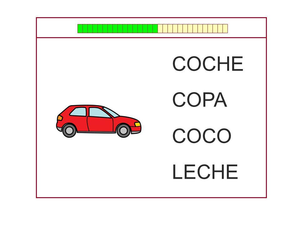 COCHE COPA COCO LECHE