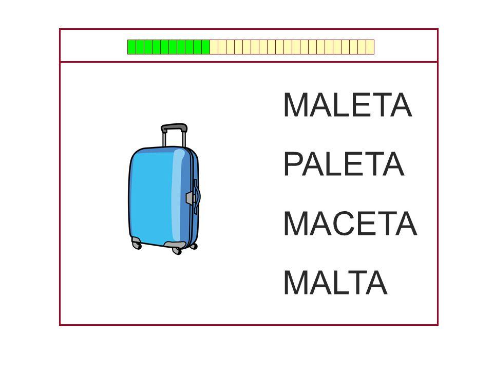 MALETA PALETA MACETA MALTA