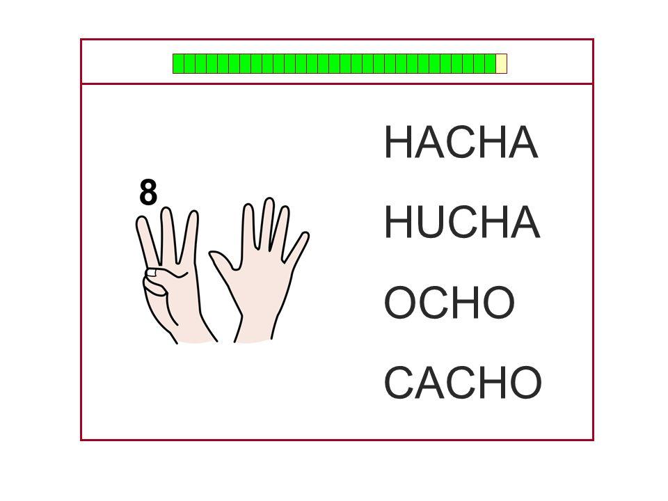HACHA HUCHA OCHO CACHO