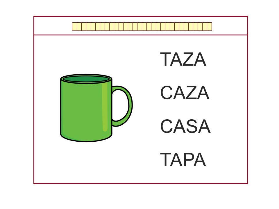 TAZA CAZA CASA TAPA