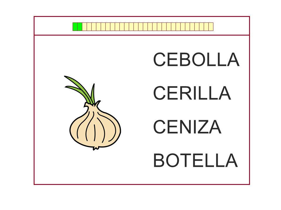 CEBOLLA CERILLA CENIZA BOTELLA