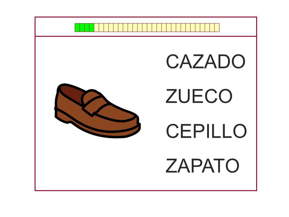 CAZADO ZUECO CEPILLO ZAPATO