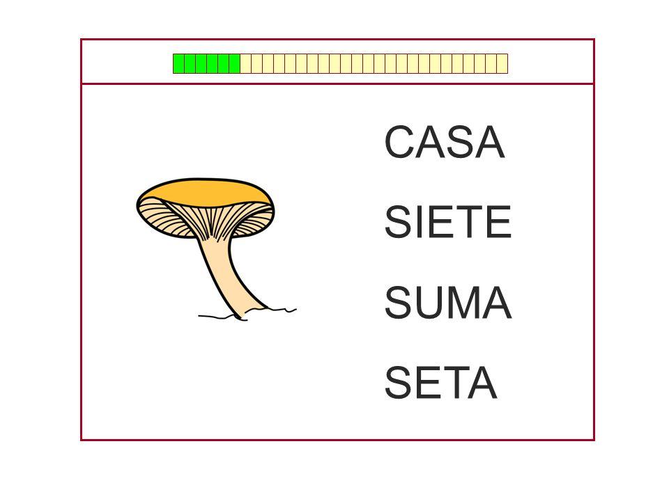CASA SIETE SUMA SETA