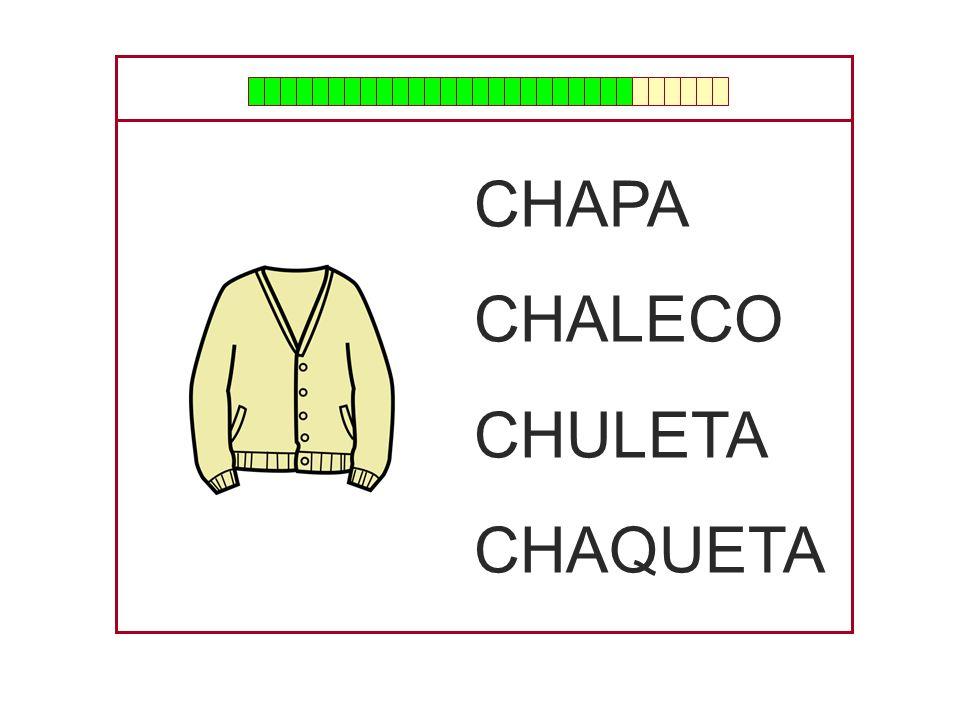 CHAPA CHALECO CHULETA CHAQUETA