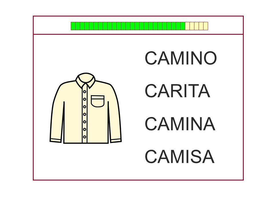 CAMINO CARITA CAMINA CAMISA