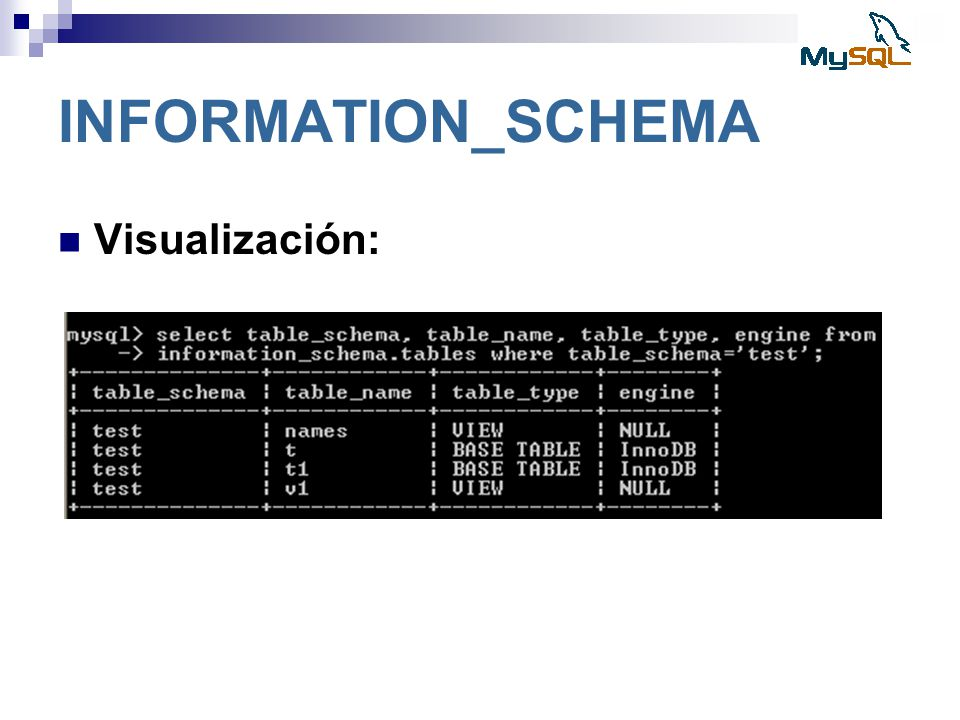 INFORMATION_SCHEMA Visualización: