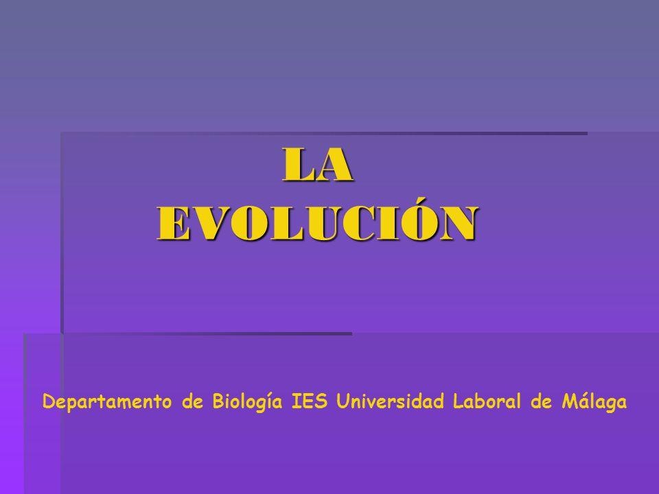 Departamento de Biología IES Universidad Laboral de Málaga