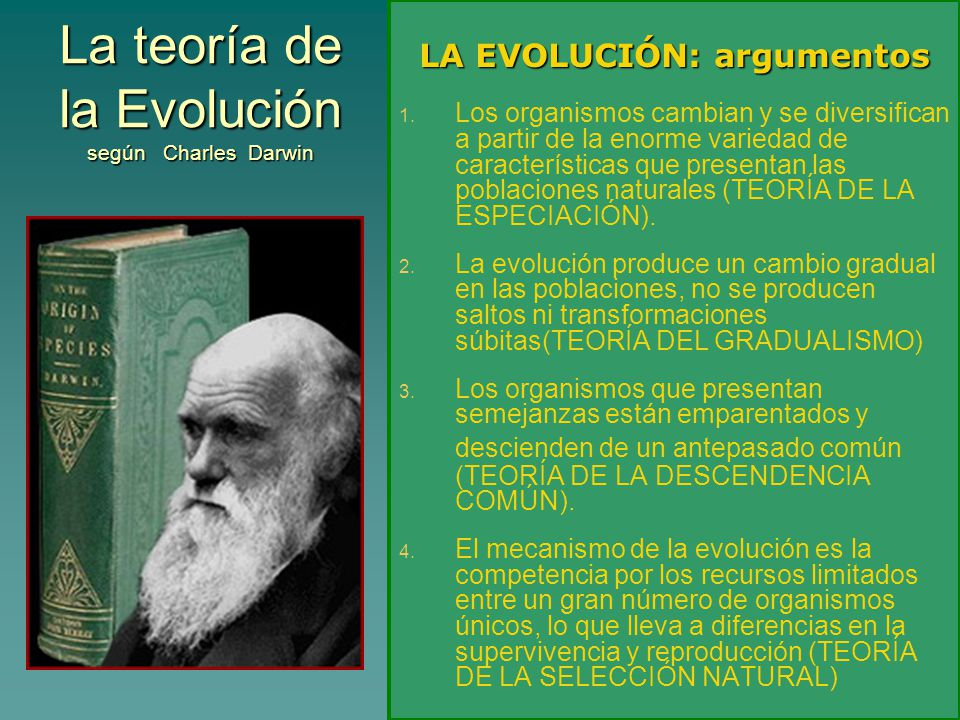 La teoría de la Evolución según Charles Darwin