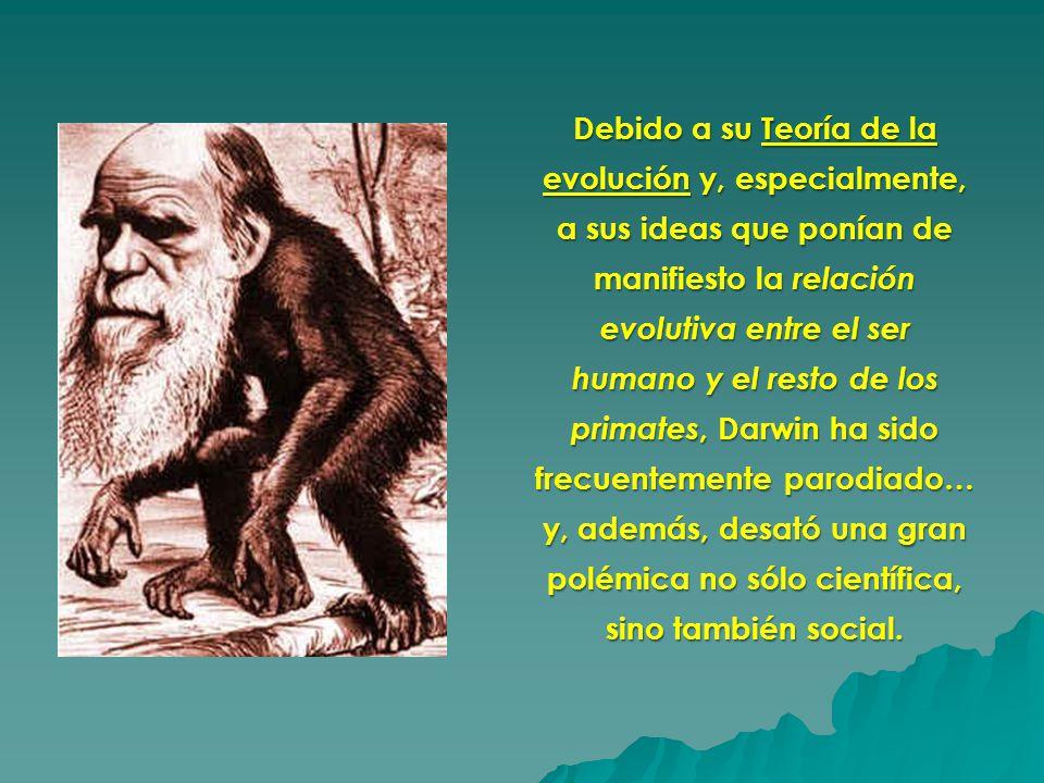 Debido a su Teoría de la evolución y, especialmente, a sus ideas que ponían de manifiesto la relación evolutiva entre el ser humano y el resto de los primates, Darwin ha sido frecuentemente parodiado… y, además, desató una gran polémica no sólo científica, sino también social.