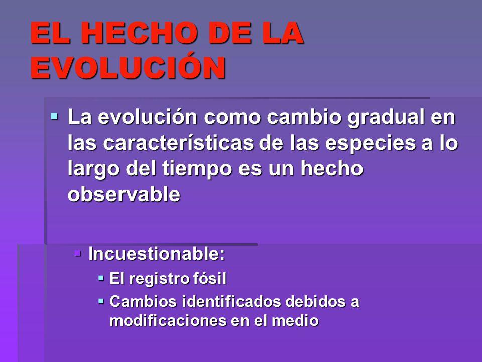 EL HECHO DE LA EVOLUCIÓN