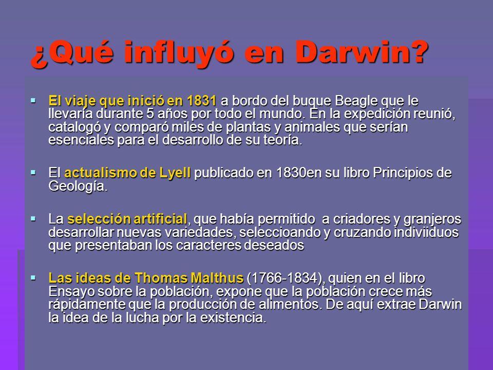 ¿Qué influyó en Darwin