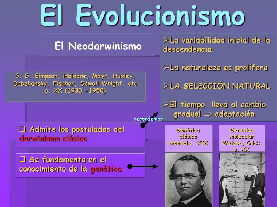 El Evolucionismo El Neodarwinismo