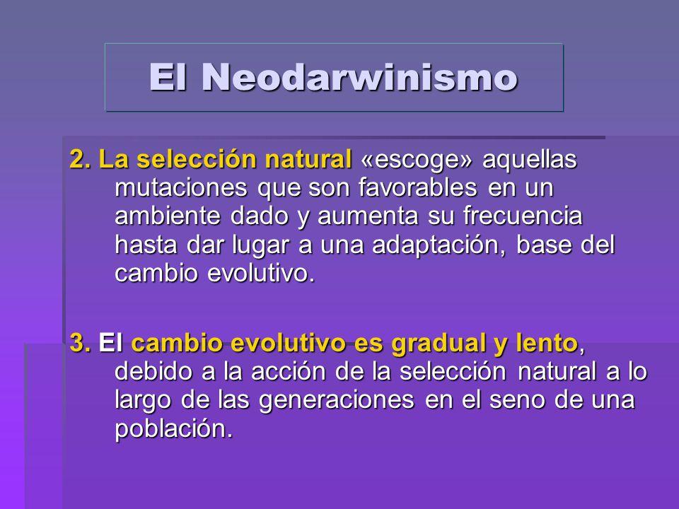 El Neodarwinismo