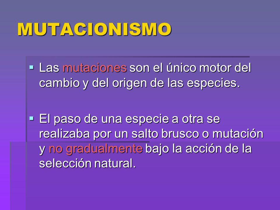 MUTACIONISMO Las mutaciones son el único motor del cambio y del origen de las especies.