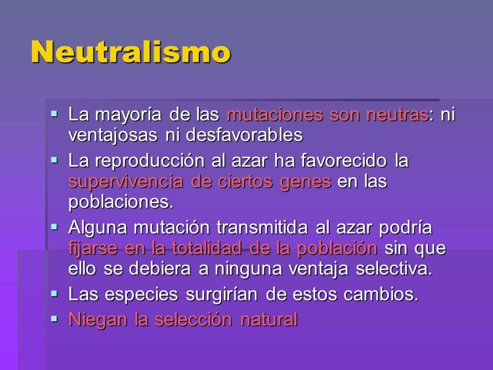 Neutralismo La mayoría de las mutaciones son neutras: ni ventajosas ni desfavorables.