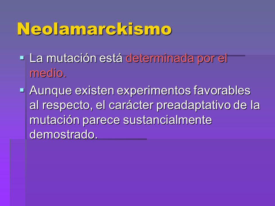 Neolamarckismo La mutación está determinada por el medio.