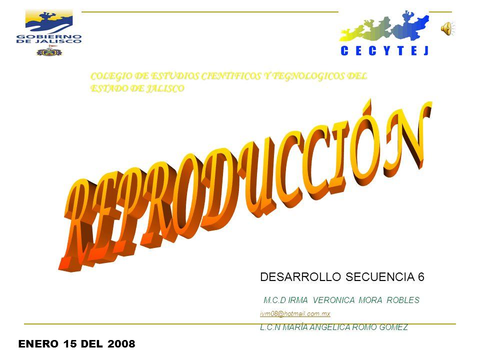 REPRODUCCIÓN DESARROLLO SECUENCIA 6 M.C.D IRMA VERONICA MORA ROBLES