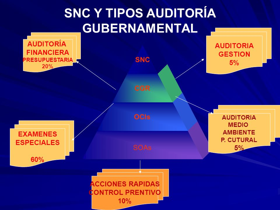 SNC Y TIPOS AUDITORÍA GUBERNAMENTAL