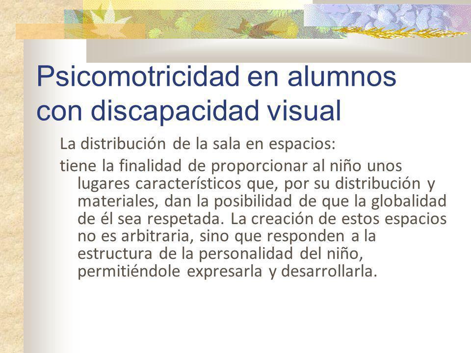 Psicomotricidad en alumnos con discapacidad visual