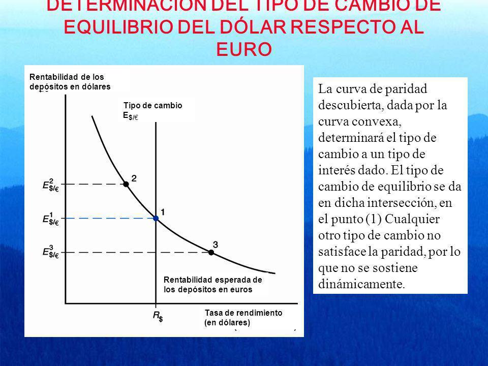 DETERMINACIÓN DEL TIPO DE CAMBIO DE EQUILIBRIO DEL DÓLAR RESPECTO AL EURO