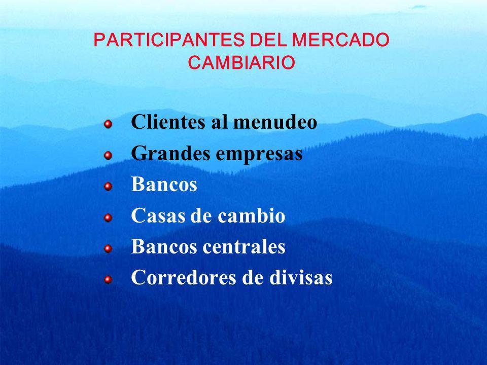 PARTICIPANTES DEL MERCADO CAMBIARIO