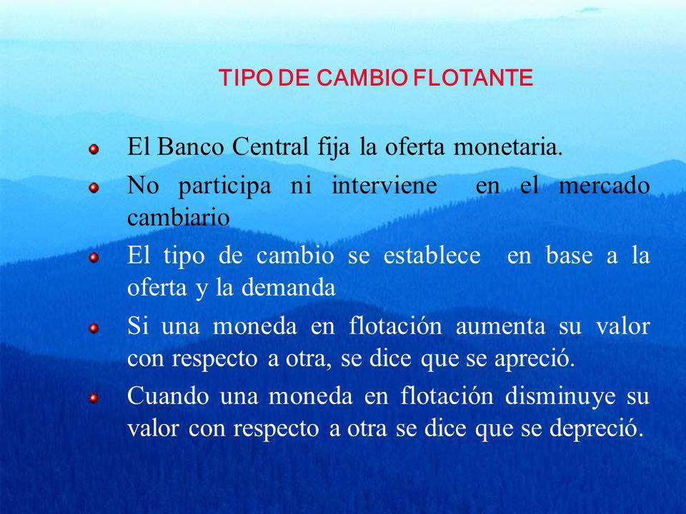 TIPO DE CAMBIO FLOTANTE