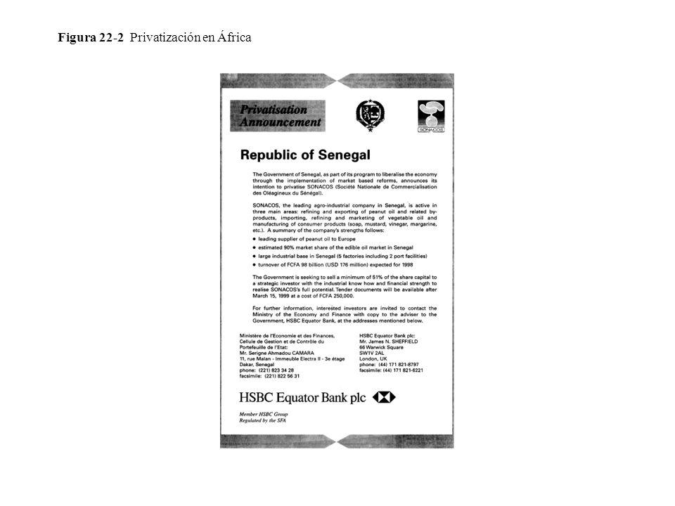 Figura 22-2 Privatización en África