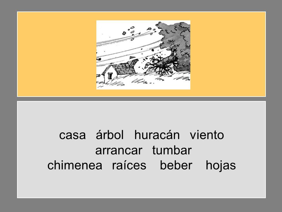 casa árbol huracán viento arrancar tumbar chimenea raíces beber hojas