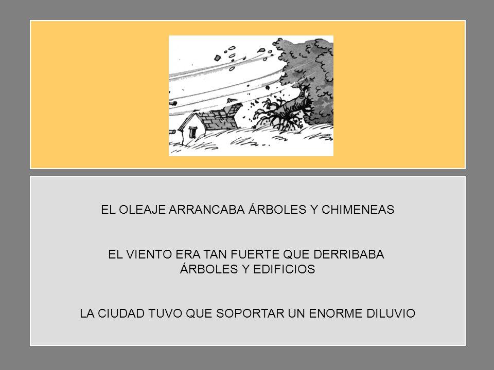 EL OLEAJE ARRANCABA ÁRBOLES Y CHIMENEAS