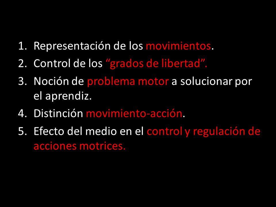 Representación de los movimientos.