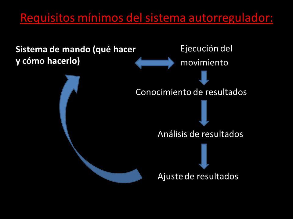 Requisitos mínimos del sistema autorregulador:
